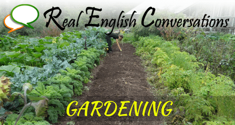 English podcast gardening